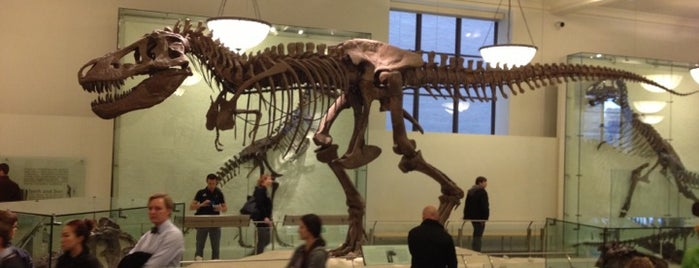 American Museum of Natural History is one of Top Natural History and Science Museums.