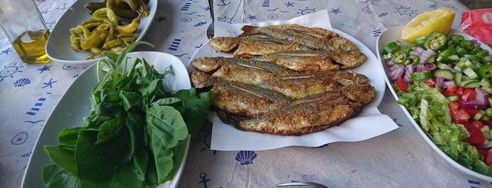 Gayret Balık is one of Yeşilköy ~ Bakırköy~Beylikdüzü.