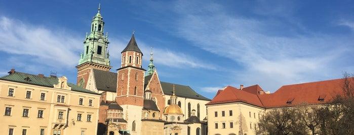 Zamek Królewski na Wawelu is one of Lieux qui ont plu à Yuliia.