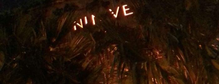Ninive is one of Dubai.