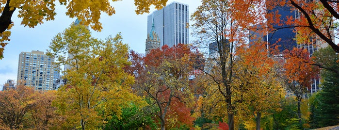Central Park is one of 7 Best Spots for Fall Foliage in NYC.
