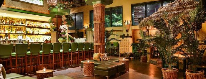 Luau Lounge Tiki Bar is one of The Tiki-est Tiki Bars in the Bay Area.