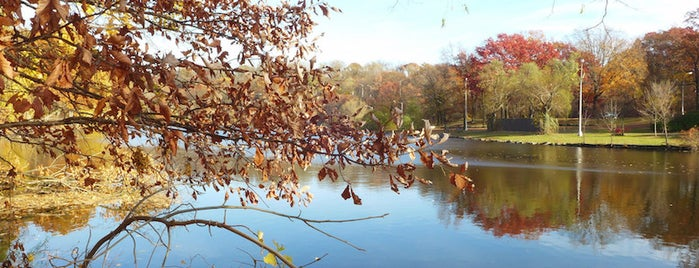 Van Cortlandt Park is one of 7 Best Spots for Fall Foliage in NYC.