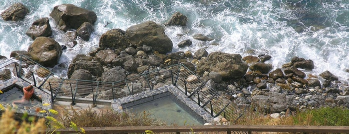 Esalen Institute is one of The Best Hot Springs in Northern California.