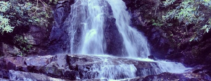 Laurel Falls is one of Tennessee.
