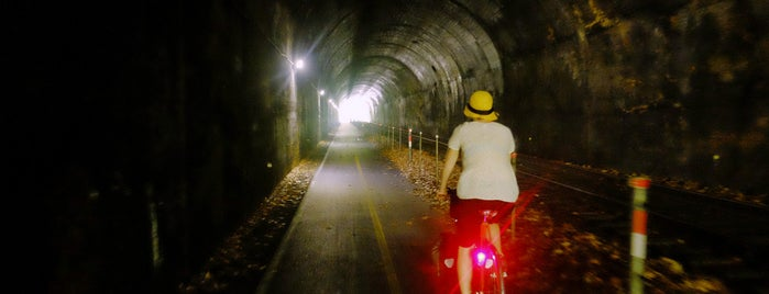 Brush Tunnel is one of Bikabout's Guide to the GAP Trail and C&O Towpath.