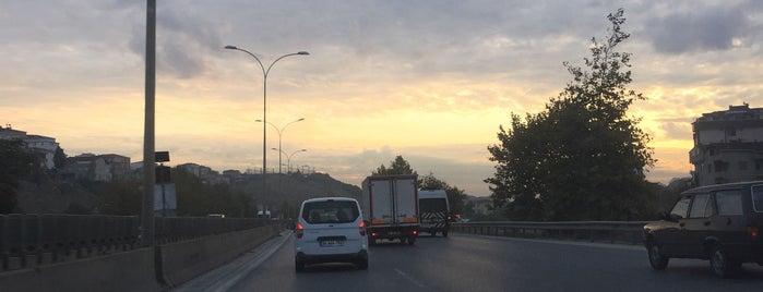 TEM Kurtköy - Pendik Bağlantısı is one of alev.