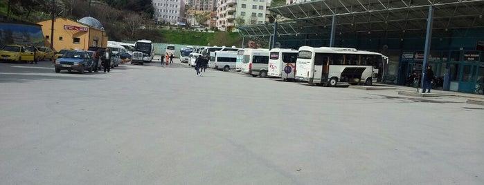 Bilecik Şehirlerarası Otobüs Terminali is one of Locais curtidos por Mustafa Çağri.