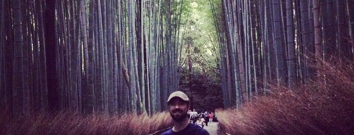 竹林の小径 is one of Kyoto.