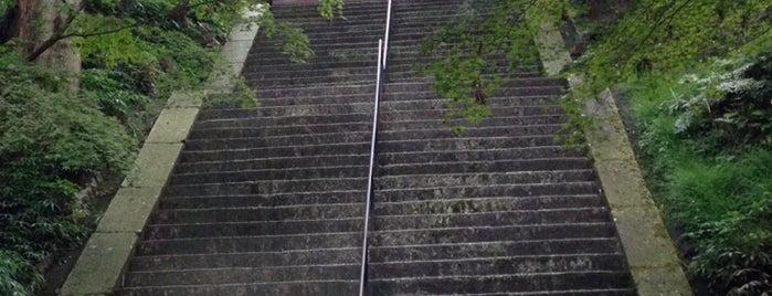 比叡山 延暦寺 is one of Kyoto.