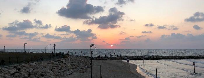 Tel-Aviv Beach is one of Best of Israel.