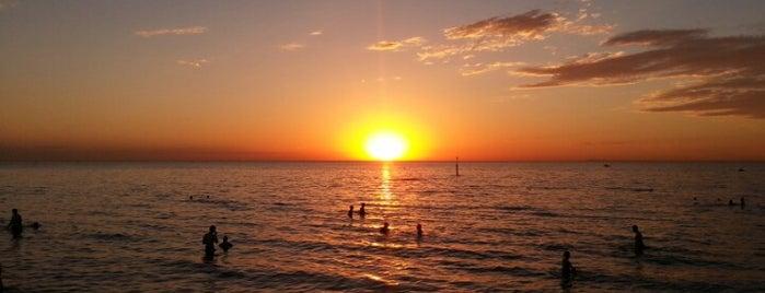 Elwood Beach is one of Locais curtidos por Adam.