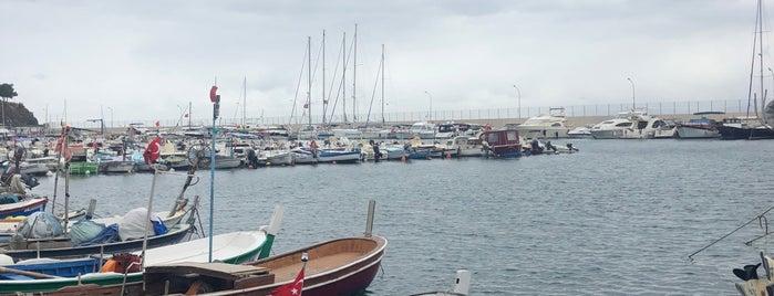 Mudanya Balıkçılar ve Denizciler Derneği is one of สถานที่ที่ Ecehan AKBEY ถูกใจ.