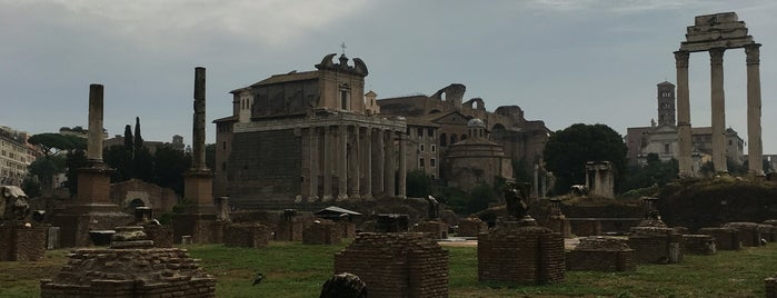 Forum Romanum is one of Orte, die Julia gefallen.