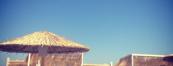 Ammades Beach Bar is one of Posti salvati di Evi.