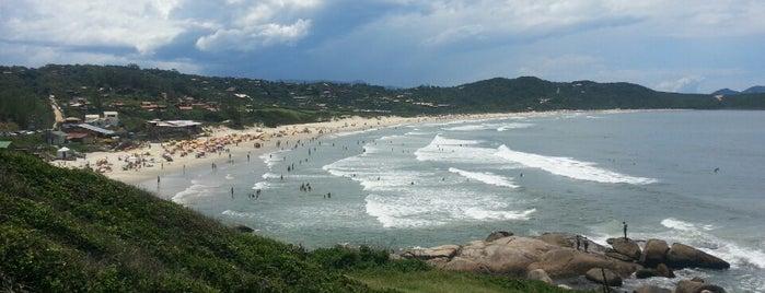 Best places in Garopaba, Rosa e Guarda do Embaú