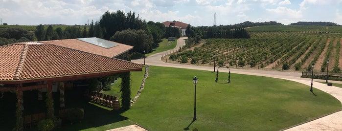 Hotel Finca Torremilanos **** is one of España.