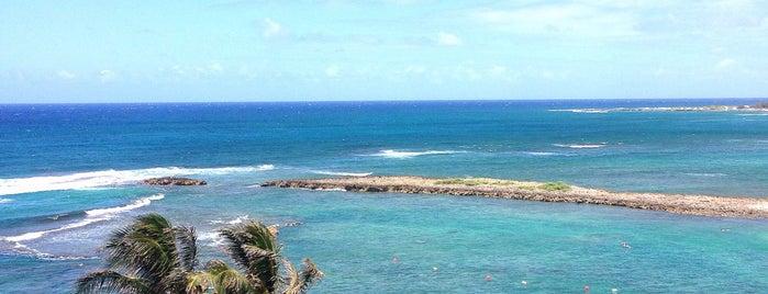 Kuilima Cove is one of Oahu.