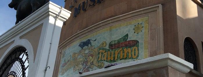 Panteón Taurino is one of Posti che sono piaciuti a Emilio.