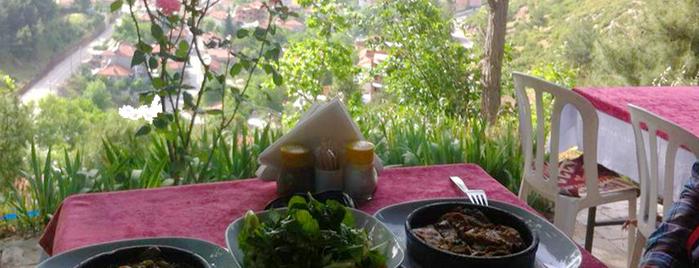 Şahin Tepesi Restaurant is one of Yemek Nerede Yenir.