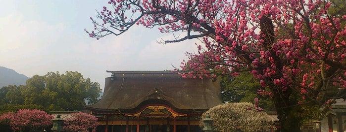 Dazaifu Tenmangu Shrine is one of Katsu : понравившиеся места.