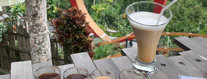 Bas Luwak Coffee is one of Enjoy Bali Ubud.
