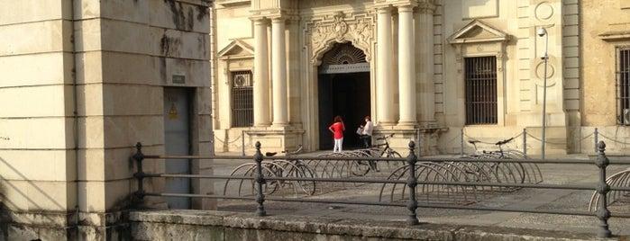 Foso Fábrica de Tabacos is one of Cosas que ver en Sevilla.