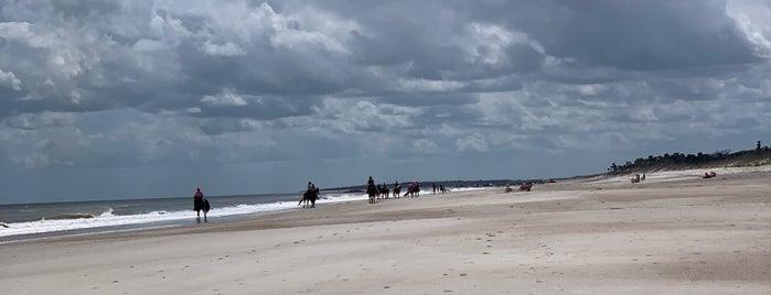 TEJ Beach - Amelia Island is one of Jordan'ın Beğendiği Mekanlar.