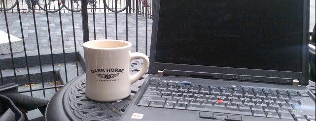 Dark Horse Espresso Bar is one of Best Coffices in Toronto.