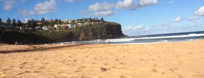 Bilgola Beach is one of Australia.