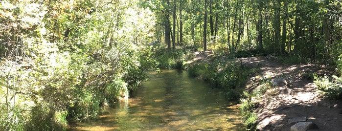 Aspen Hunter Creek Trail is one of Lugares favoritos de Kyle.