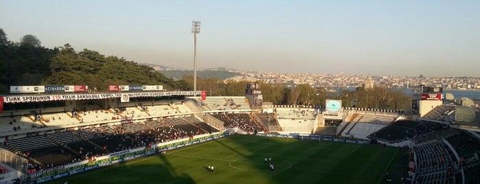 Beşiktaş is one of Stadyumlar.