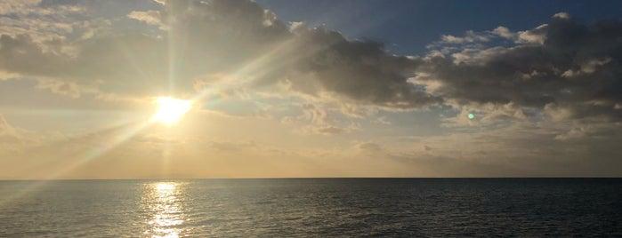 Blue Pearl Bay is one of Tempat yang Disukai Libertad.