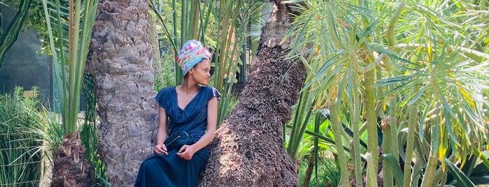 Le Jardin Secret is one of Marrakech & Essaouira & Tanger.