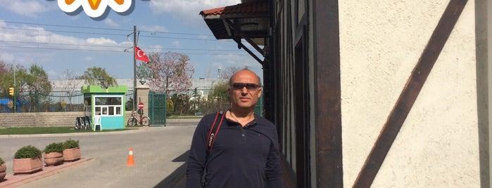 Turgut: сохраненные места