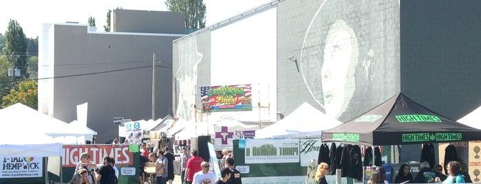Fremont Original Outdoor Cinema is one of Seattle Area Oddities.