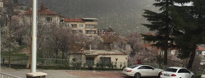 Antalya Buyuksehir Belediyesi Akseki Hizmet Birimi is one of Halis'in Beğendiği Mekanlar.