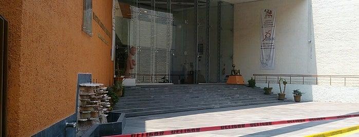Instituto Nacional de Perinatología is one of Tempat yang Disukai Osiris.
