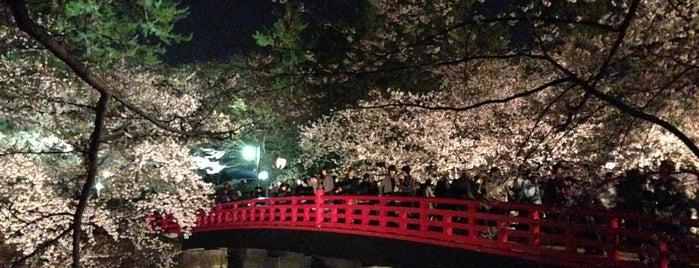 弘前公園 is one of 日本夜景遺産.