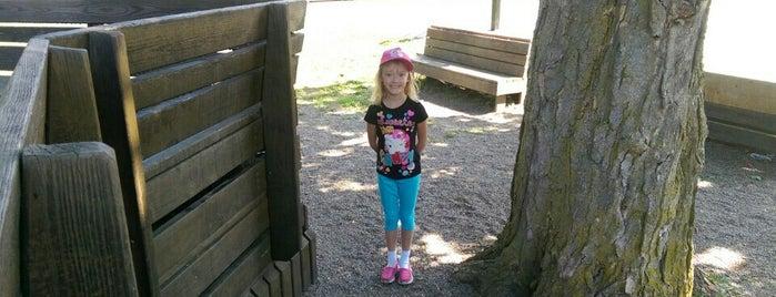 Hamburg Community Playground is one of Buffalo Playgrounds.