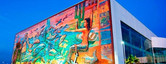 Mazatlan International Center is one of Orte, die Olivia gefallen.