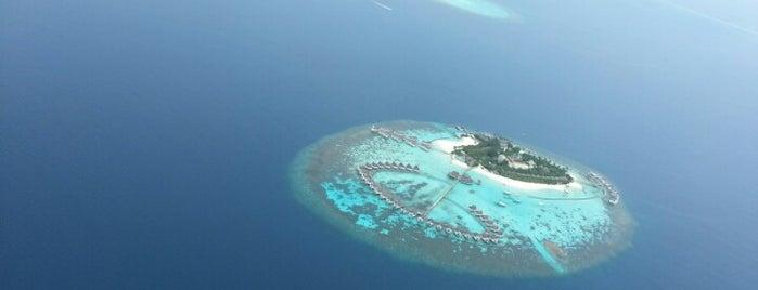 Centara Grand Island Resort & Spa Maldives is one of Maldives Trip.
