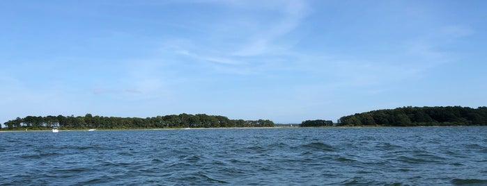 Mashomack Cove is one of Hamptons to do.