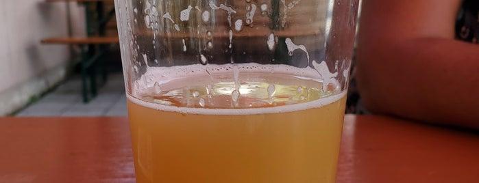 New Park Brewing is one of Posti che sono piaciuti a SKW.