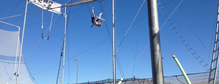 Terry Cavaretta Trapeze Experience is one of My Las Vegas Favorites.