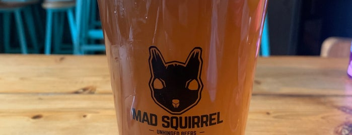 Mad Squirrel Tap & Bottle Shop is one of St. Albans.