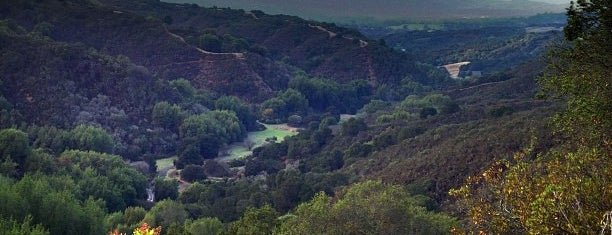 Palo Alto Foothills Park is one of E poi un giorno un napoletano finì nella Valley....