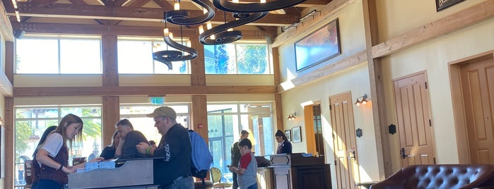 Guest Relations Lobby is one of Disney Springs.