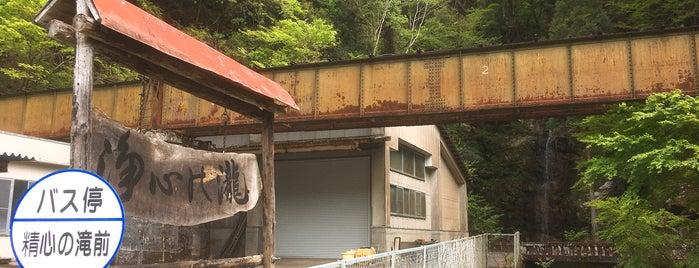 浄心の滝 is one of Locais curtidos por 商品レビュー専門.