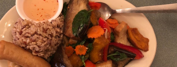 Red Curry Vegan Kitchen is one of Posti che sono piaciuti a Mich.